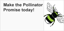 Make the Pollinator Promise