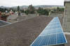 solar panels on the roof of Ecotricity HQ.