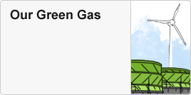 Our Green Gas